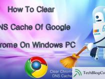 How to Clear or flush the DNS cache in Google Chrome?