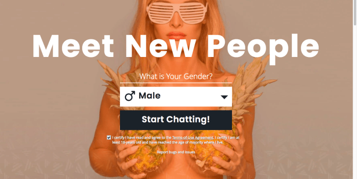 RoleChat Anonymous Chat Site