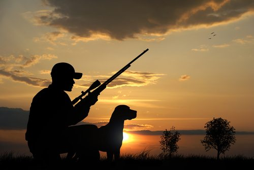 Must-Have Tech Gear to Maximize Your Hunt