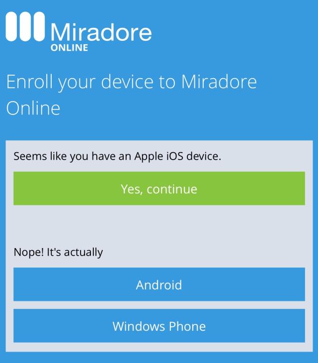 miradore-online-screenshot-6