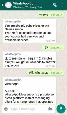 Use WhatsApp as Search Engine