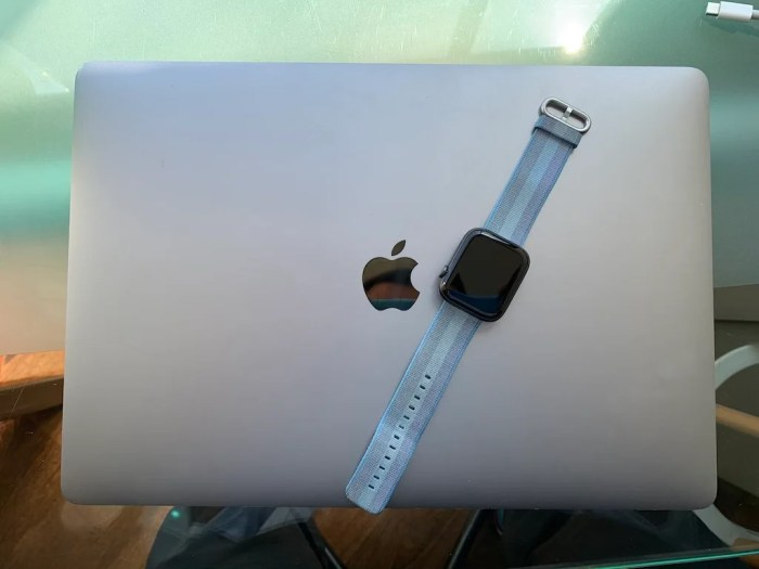 """Apple Watch LTE – la """"letra menuda"""""""