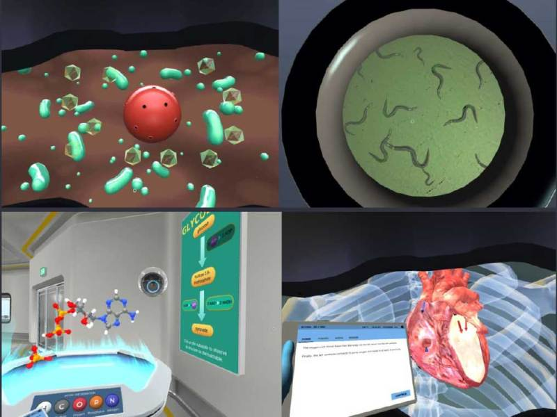 Google Launches Virtual Lab for STEM Students