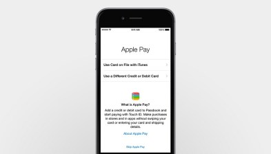 Apple Pay (3)