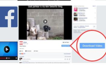 How to Download Facebook Videos in a Click