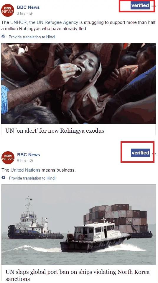 project fib flagging fake news