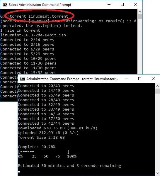 torrent command line downloading in progress