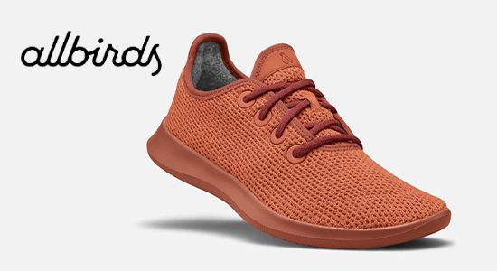 allbirds-eco-friendly-shoe