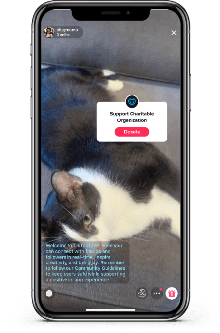 Tiktok Launches Donation Stickers Allowing Creators To Fundraise For Coronavirus Relief Efforts Wilson S Media