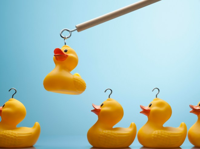 Pole lifting rubber duck with hook in its head
