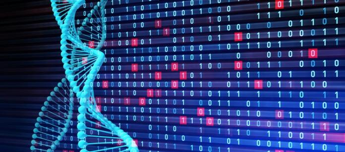 Drug Detection Using Artificial Intelligence