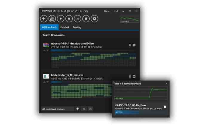 "Download Ninja - ""7 Best Free IDM Alternatives You've Never Heard About"""
