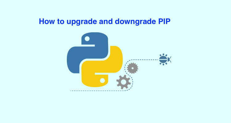 install python 3 and pip
