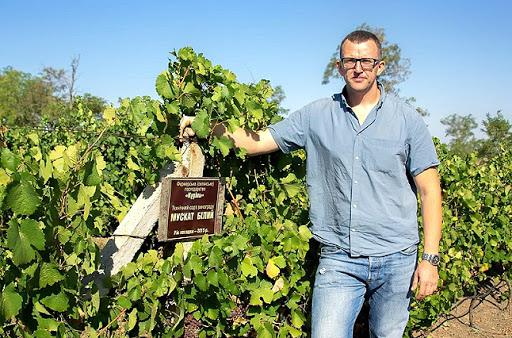 Чим продукція сімейної виноробні «Курінь» підкорює споживачів в Україні та за кордоном