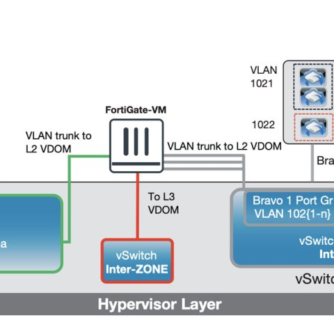 VLAN and VDOM