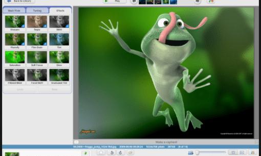 Free Download Picasa 3 Latest Version 2019 - TechFileHippo