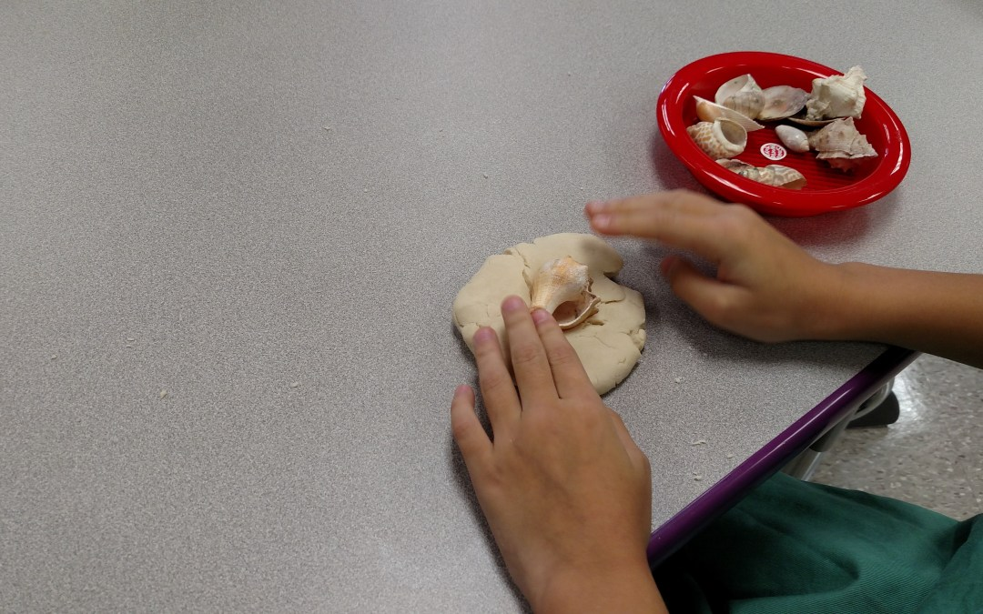Homemade Fossils In Fourth Grade