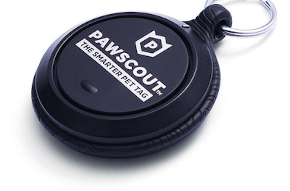 Pawscout Aims to 'Reinvent' the Pet Tag