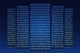 FortiGuard Threat Landscape, vulnerabilità, virus e minacce Web del 2013