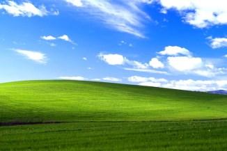 Windows XP, lo usa ancora un utente su quattro