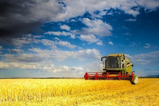 Terrasharp: bene il 5G in agricoltura, attenti al digital divide