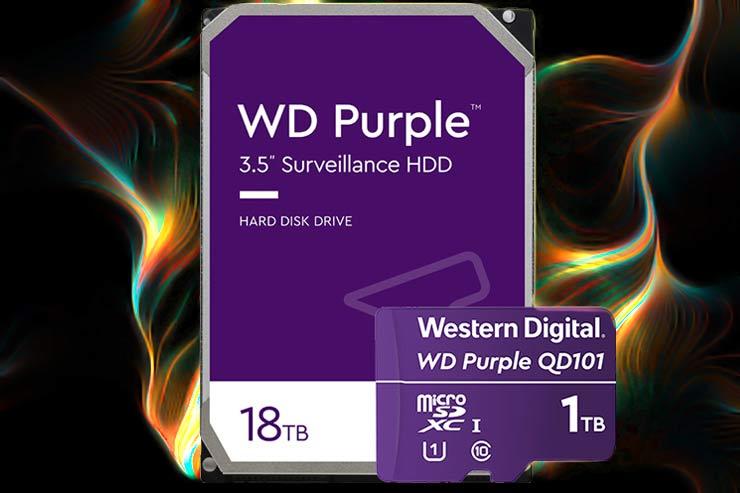 Registrazione video WD Purple