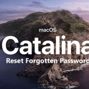 How to Reset forgotten Password on Mac