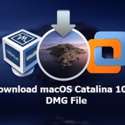 macos catalina dmg file
