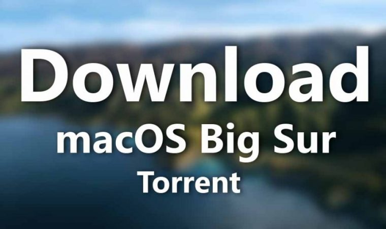 Download macOS Big Sur Torrent