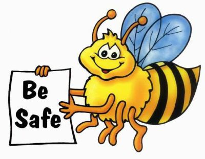 safe web cam bee