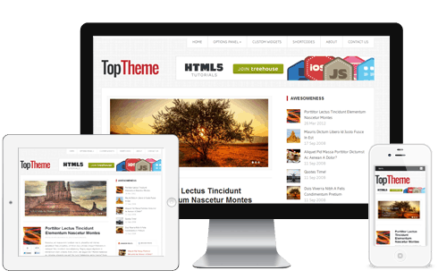 Top-WordPress-Theme