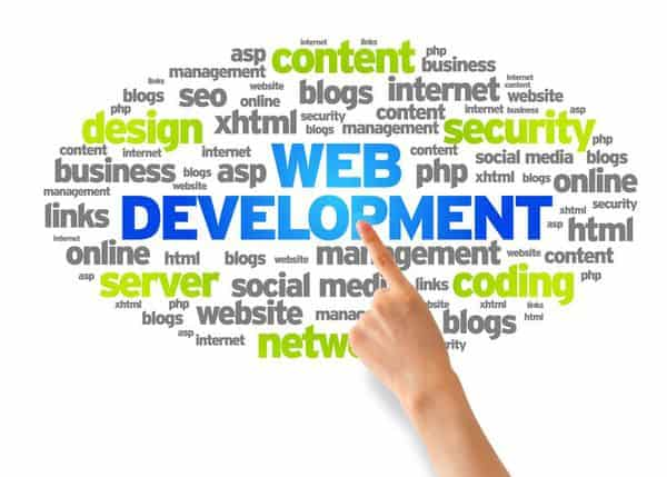 cost of web development