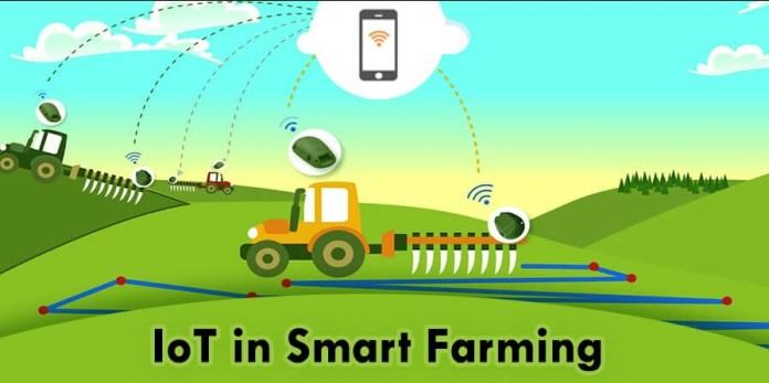 Internet of Things farming