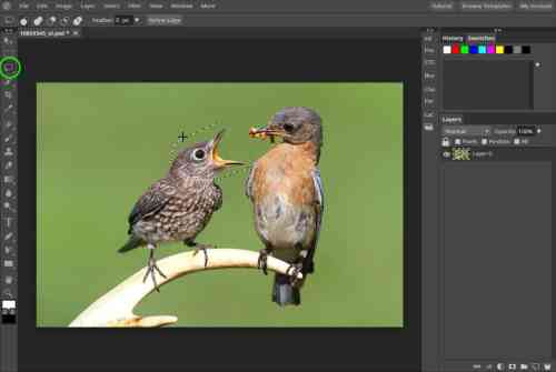 5 Best Alternatives for Photoshop for Mac 5