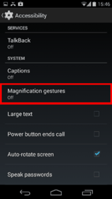 Magnification Gesture