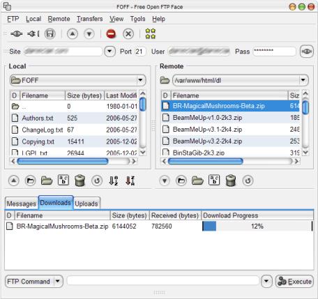 FOFF (Free Open FTP Face)