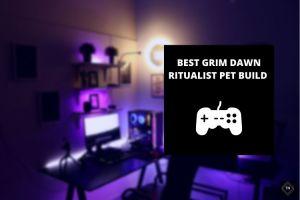 Best Grim Dawn Ritualist Pet Build In 2021 | Complete Guide