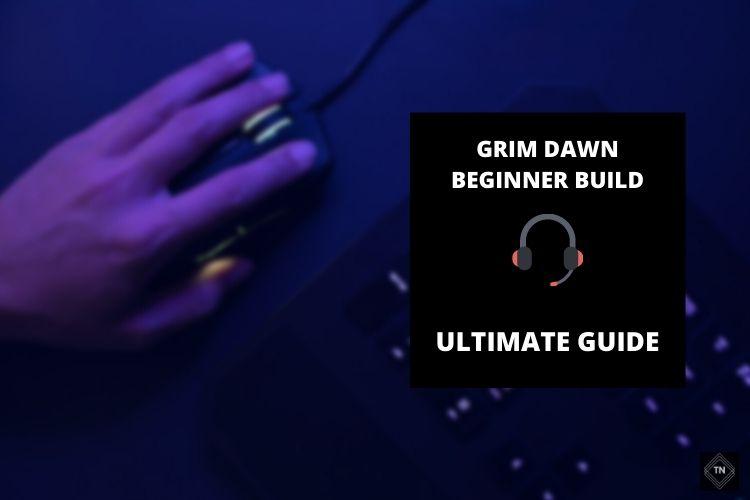 Best Grim Dawn Beginner Builds Guide (Updated 2021)