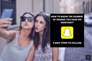 How To See How Many Friends You Have On Snapchat   5 Easy Steps To Follow