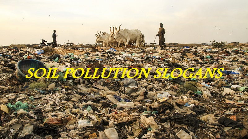 FAMOUS SLOGANS ON SOIL POLLUTION