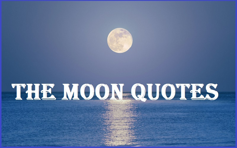 The Moon Quotes