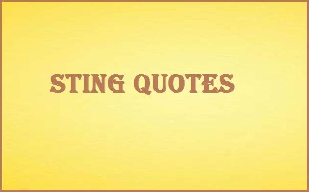 Inspirational Sting Quotes And Sayings