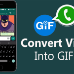 You Can Convert Videos Into GIFs On WhatsApp, New Feature..