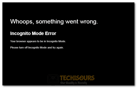 Netflix Incognito Mode Error