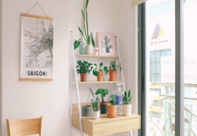 Meet the Elephant in the Room: Minimalism & Downsizing