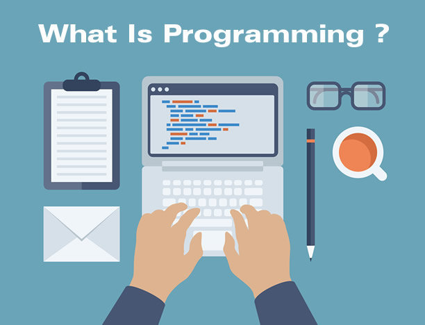 [Infographic] What Is Programming And What Do Programmers Do?