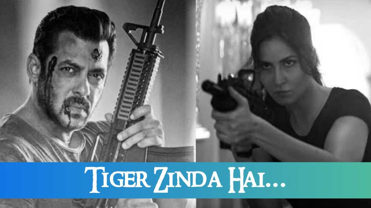 Tiger Zinda Hai Full Movie download, Tiger Abhi Zinda Hai Movie Download 720p, Tiger Abhi Zinda Hai Movie Download Pagalworld