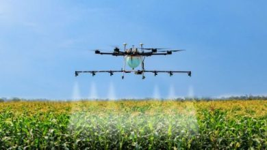 Photo of Dr Drone will improve the health of the crops, know how?