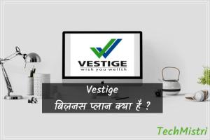 Vestige MLM business plan in hindi