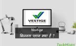 Vestige का MLM बिज़नेस प्लान क्या है?पूरी जानकारी